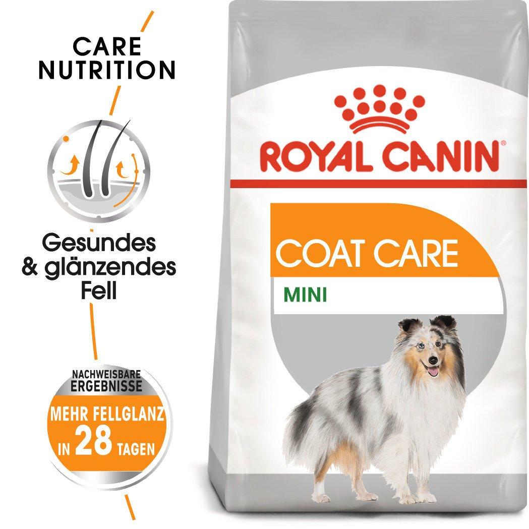 Royal Canin CCN Coat Care Mini Trockenfutter für kleine Hunde für glänzendes Fell, Bild 2