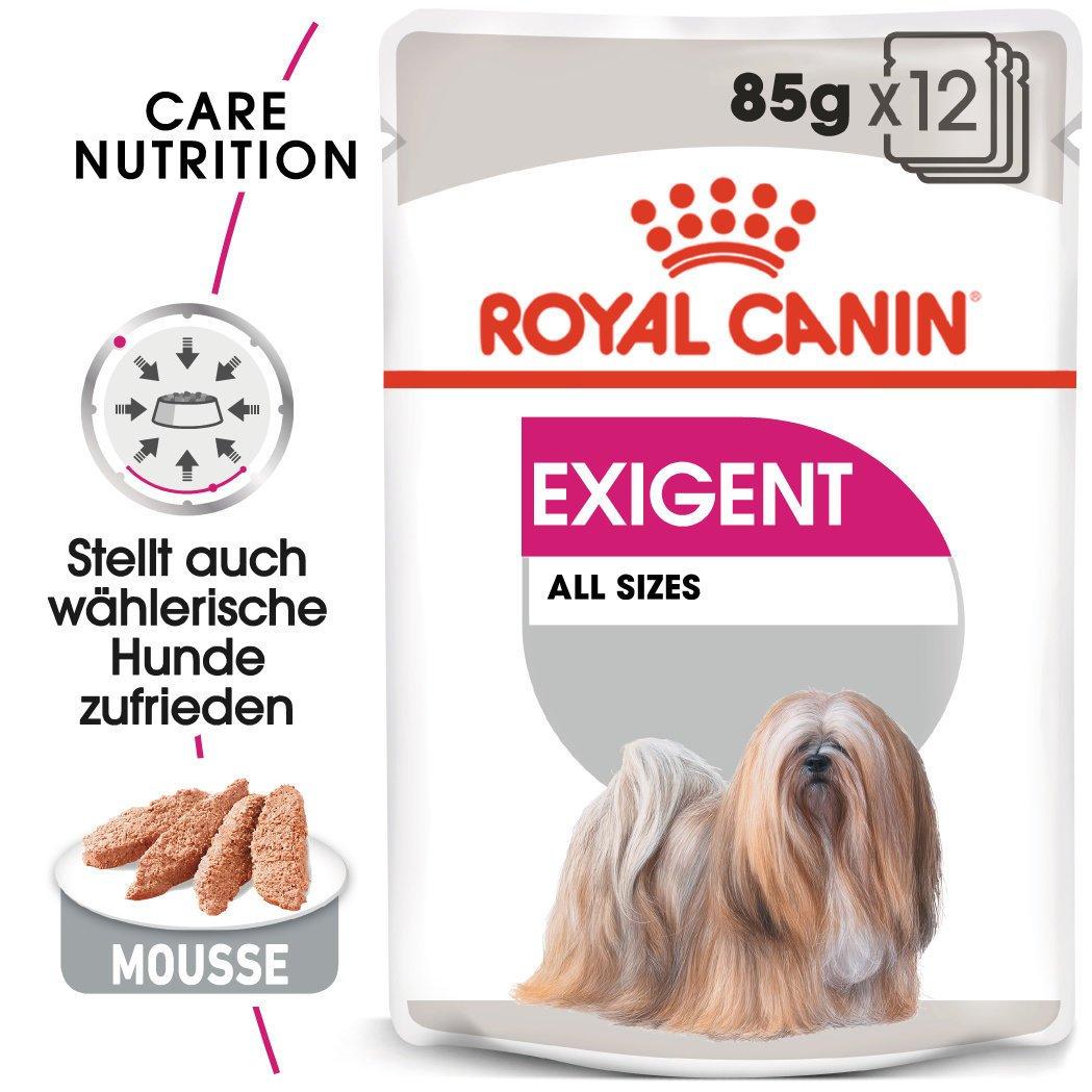 Royal Canin CCN Exigent Nassfutter für Hunde