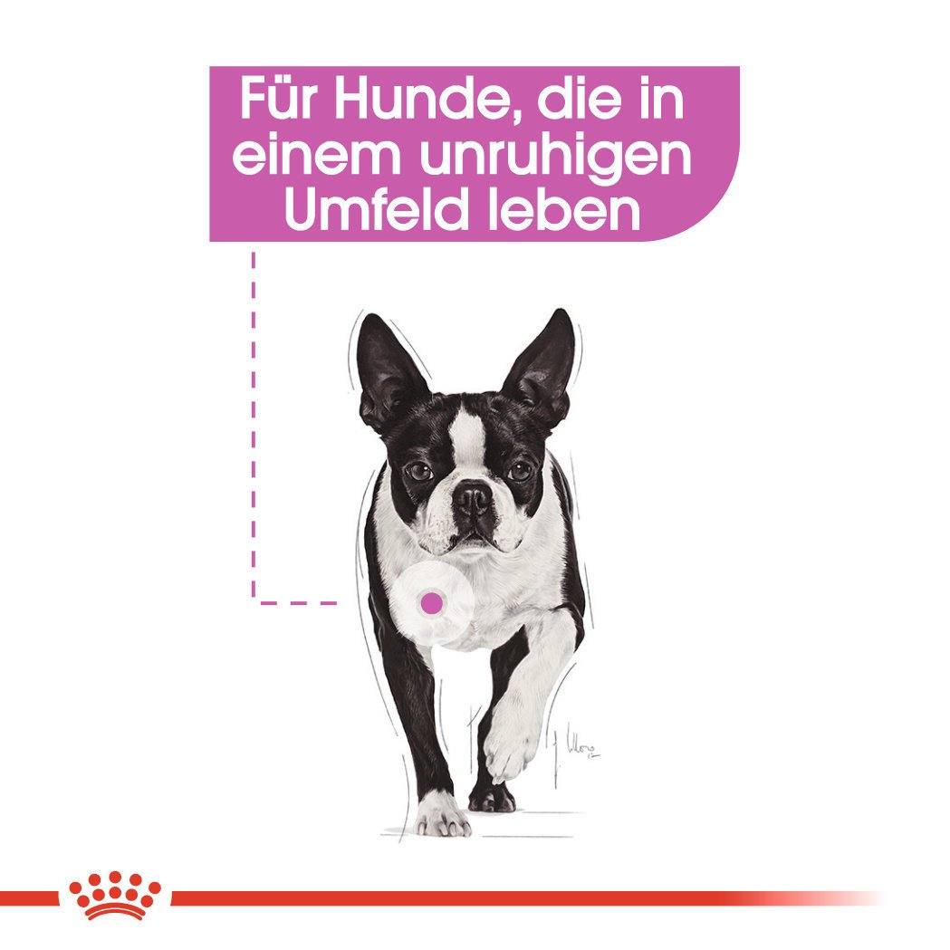 Royal Canin CCN Relax Care Nassfutter für Hunde, Bild 3