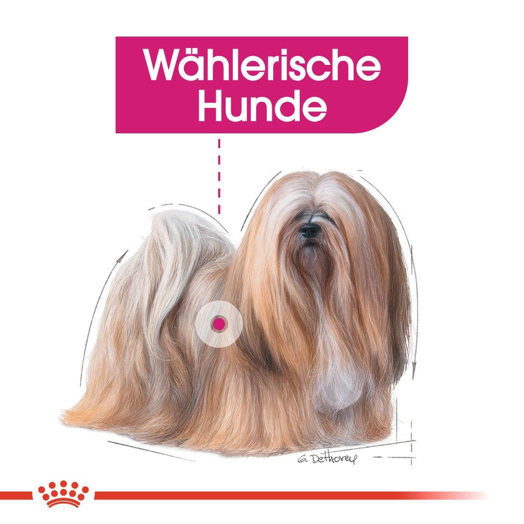 Royal Canin Exigent Mini Trockenfutter für wählerische kleine Hunde, Bild 4