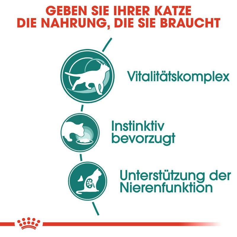 Royal Canin INSTINCTIVE 7+ Nassfutter in Soße für ältere Katzen, Bild 5