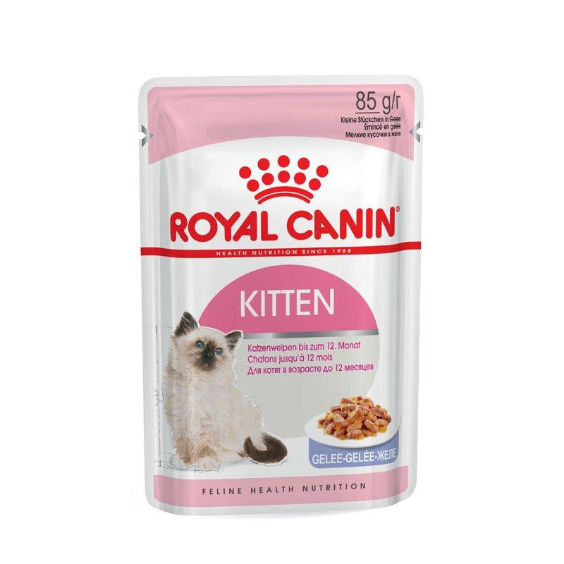Royal Canin KITTEN Nassfutter in Soße oder Gelee für Kätzchen, 12 x 85g in Gelee