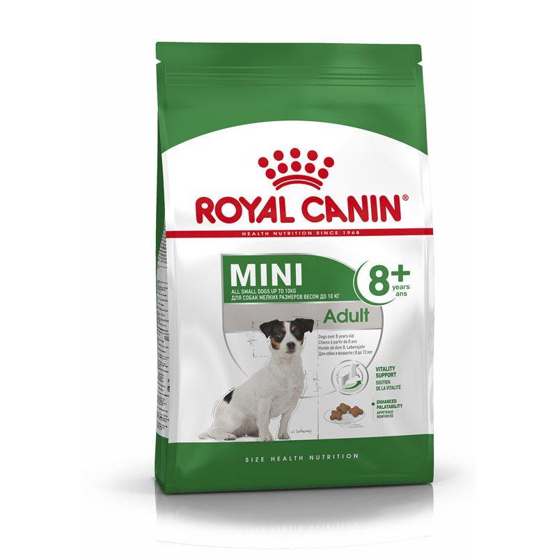 Royal Canin Mini Adult 8+ Trockenfutter für ältere kleine Hunde