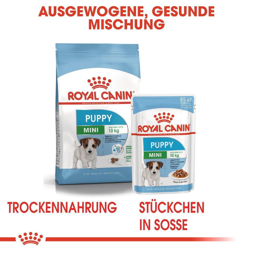 Royal Canin Mini Puppy Welpenfutter nass für kleine Hunde, Bild 8