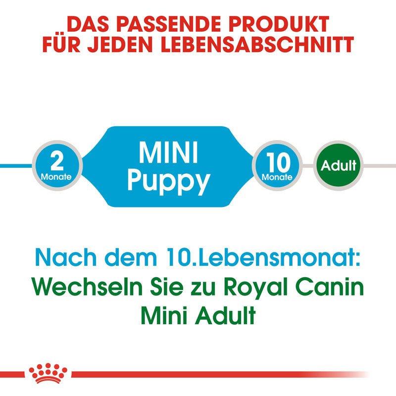 Royal Canin Mini Puppy Welpenfutter trocken für kleine Hunde, Bild 6