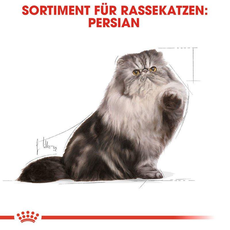 Royal Canin  Persian Adult Katzenfutter nass für Perser-Katzen, Bild 4