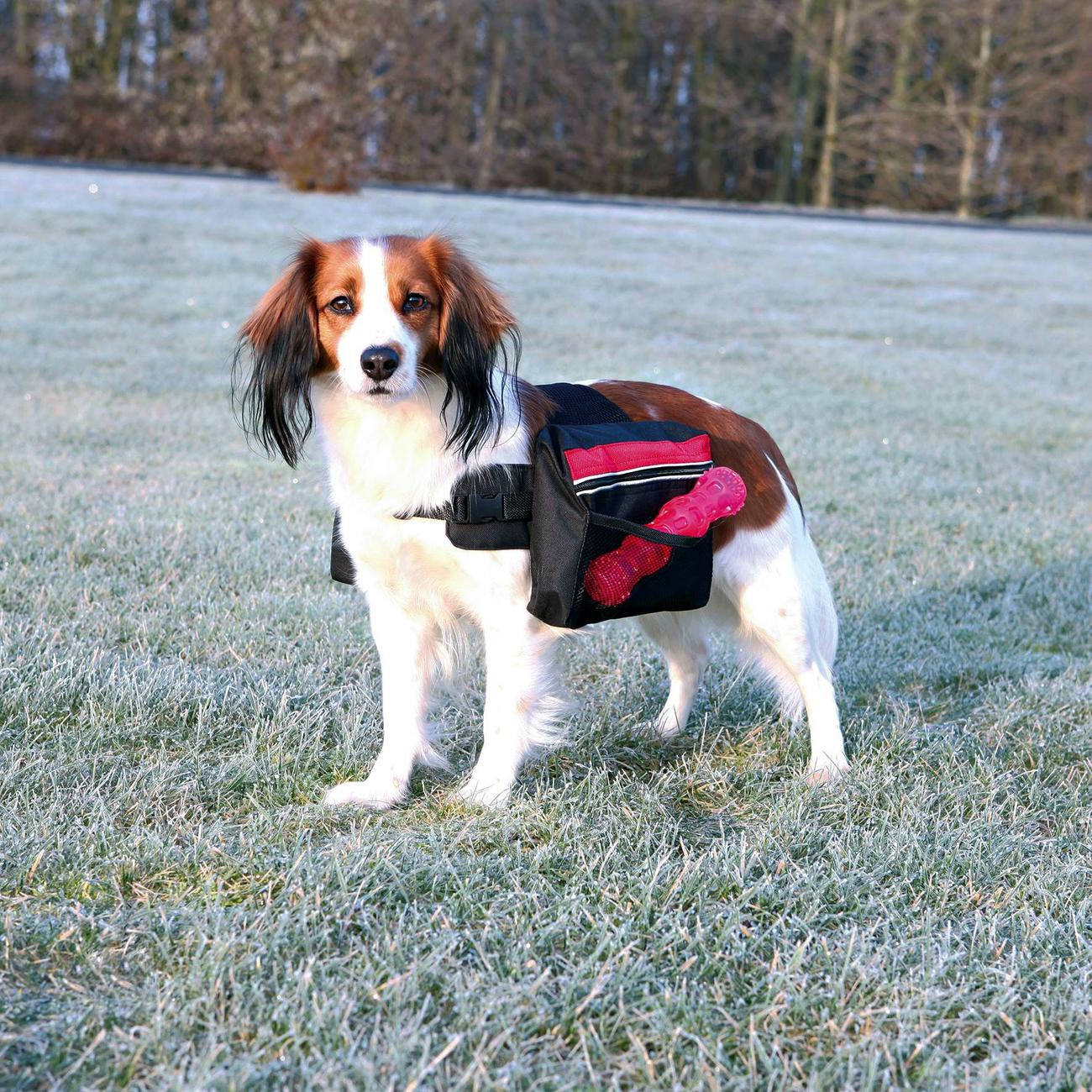 Trixie Rucksack für Hunde, schwarz 30103