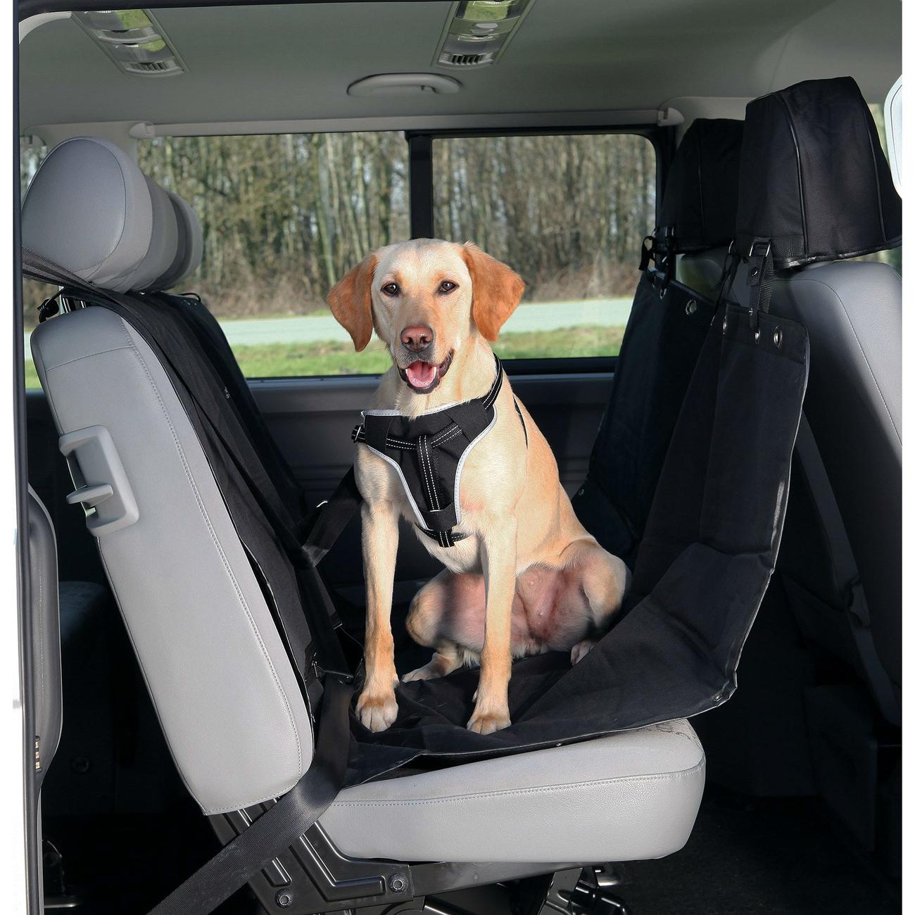TRIXIE Rücksitz Auto-Schondecke teilbar mit Kopfstützen-Schutz 1324