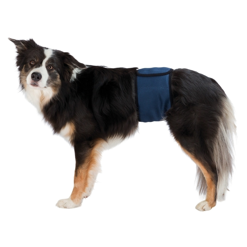 Karlie Aufblasbarer Hundekragen, XS: Halsumfang 15 - 20 cm