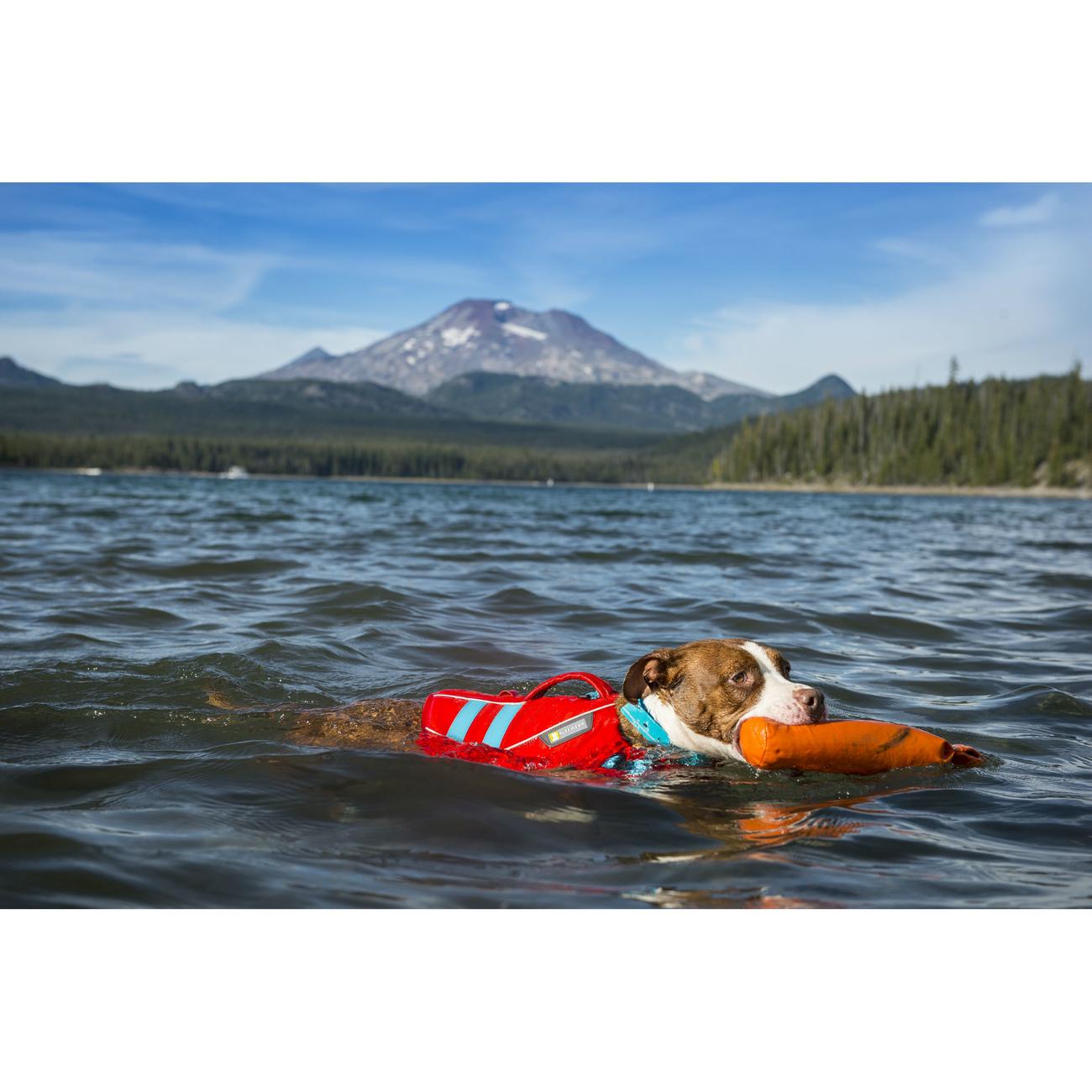 Ruffwear Float Coat Schwimmweste für Hunde, Bild 20