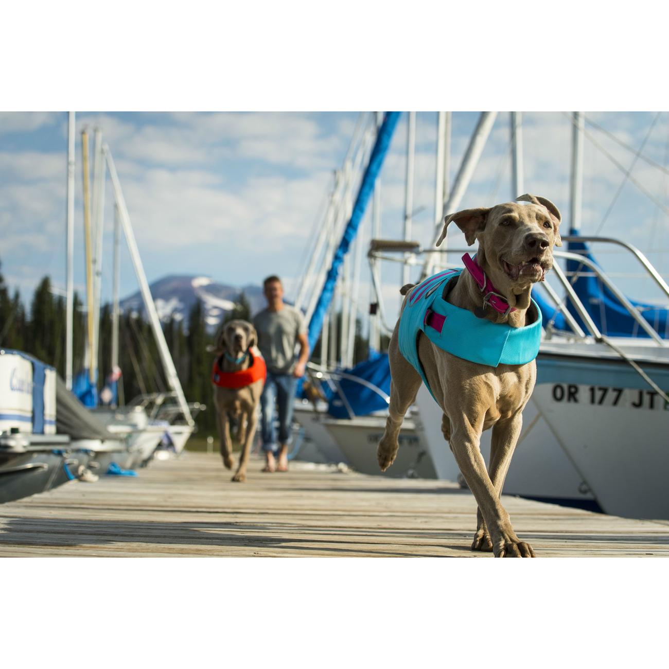 Ruffwear Float Coat Schwimmweste für Hunde, Bild 22