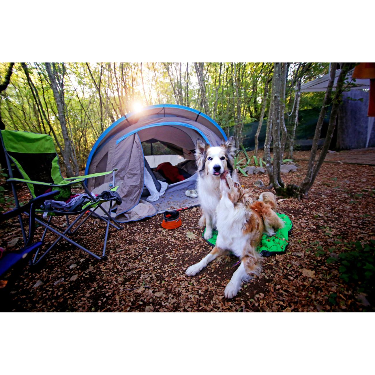 Ruffwear Hundebett Highlands Bed für Outdoor, Bild 8