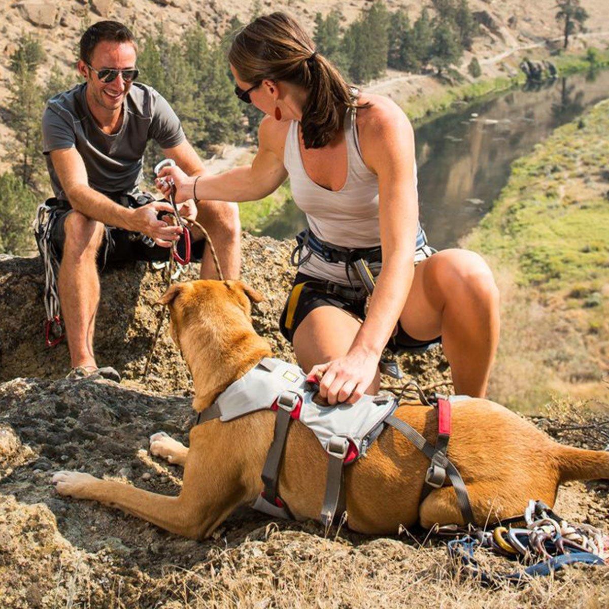 Ruffwear Hundegeschirr Doubleback™ Harness, Bild 2