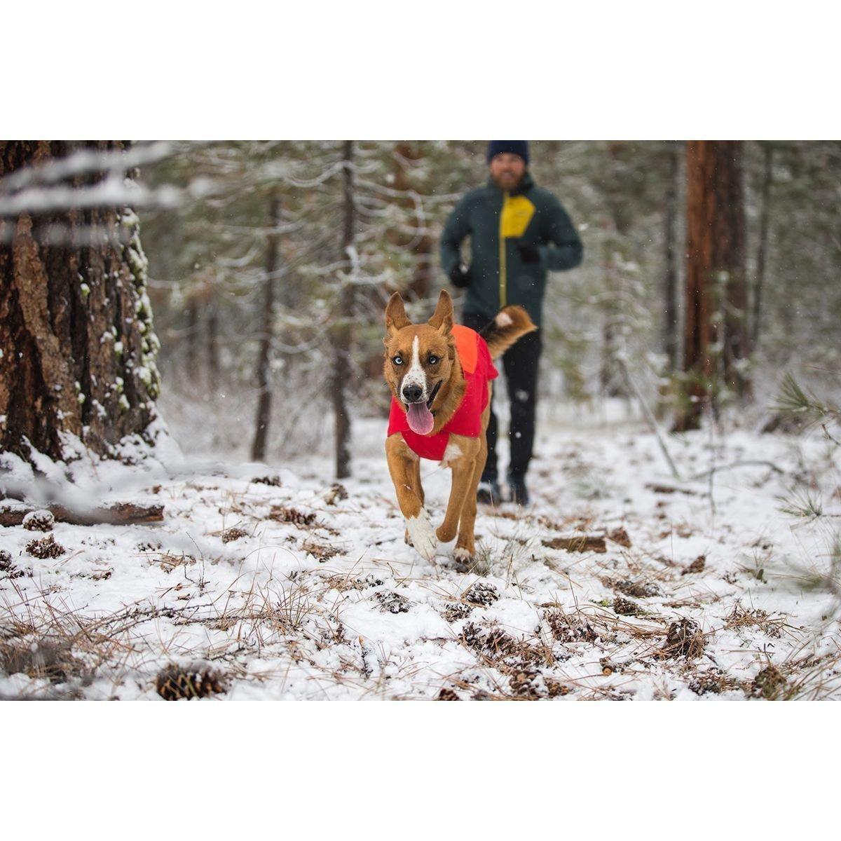 Ruffwear Vert™ Jacke für Hunde, Bild 4