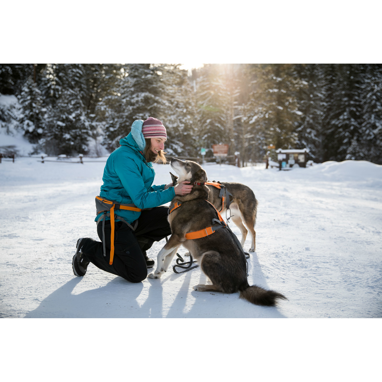 Ruffwear Omnijore™ Joring System Zuggeschirr für Hunde, Bild 13