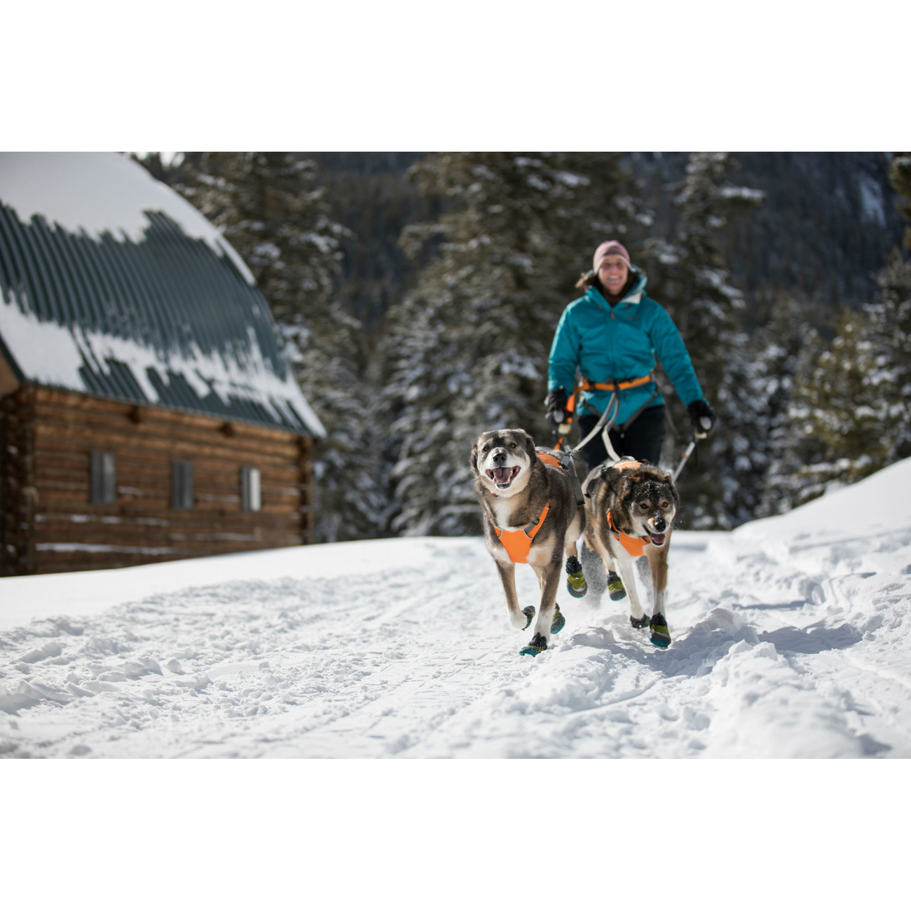 Ruffwear Omnijore™ Joring System Zuggeschirr für Hunde, Bild 2
