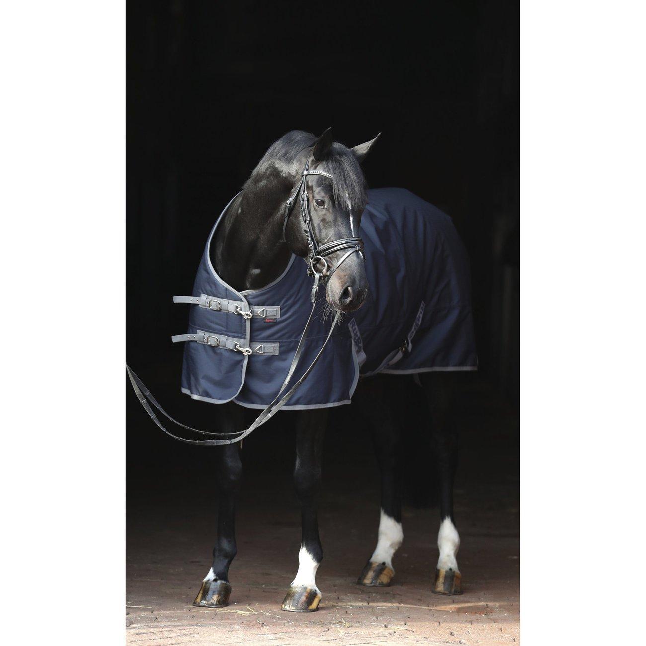 RugBe IceProtect 300 Winterdecke für Pferde Bild 9