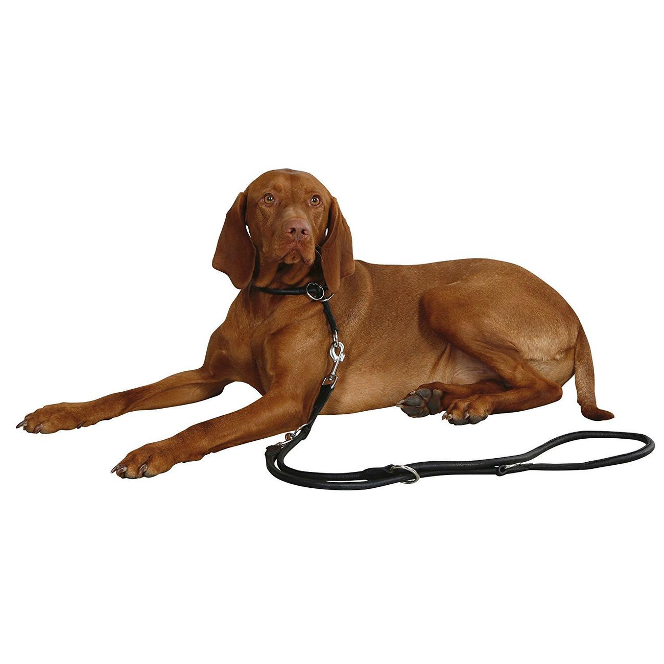 Kerbl Rundleder Schlupf Halsband Roma mit Stopper für Hunde, Bild 3