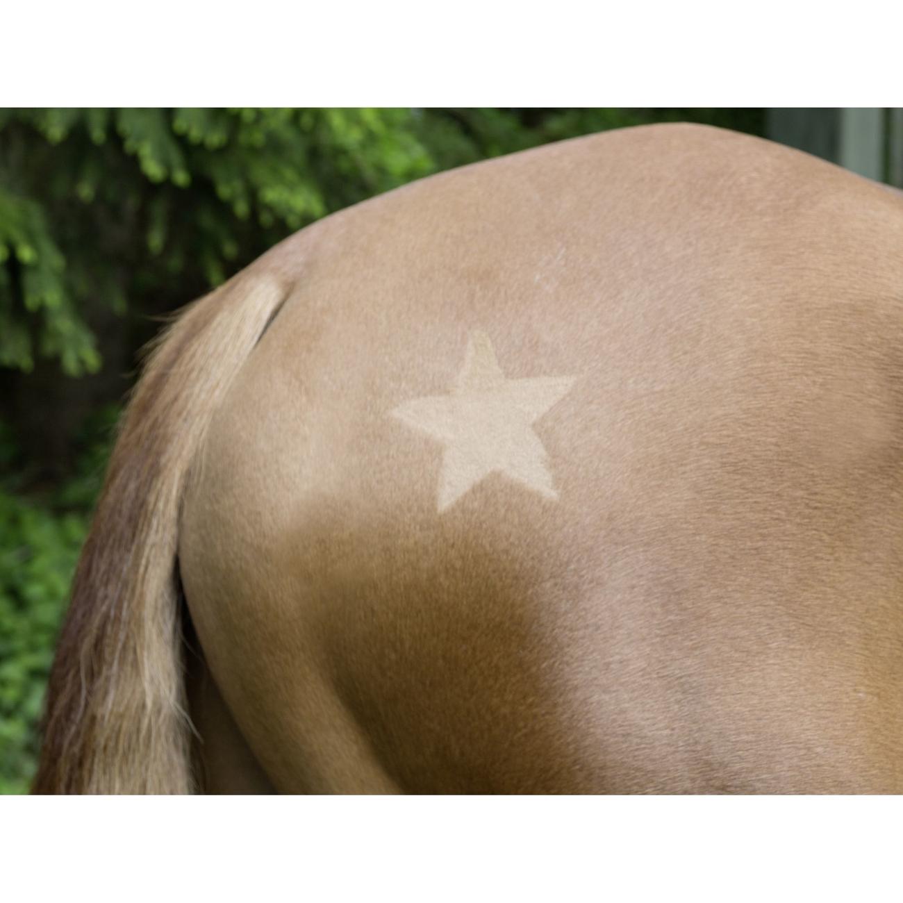 Kerbl Scherschablone für Pferde 3er Set, Bild 3