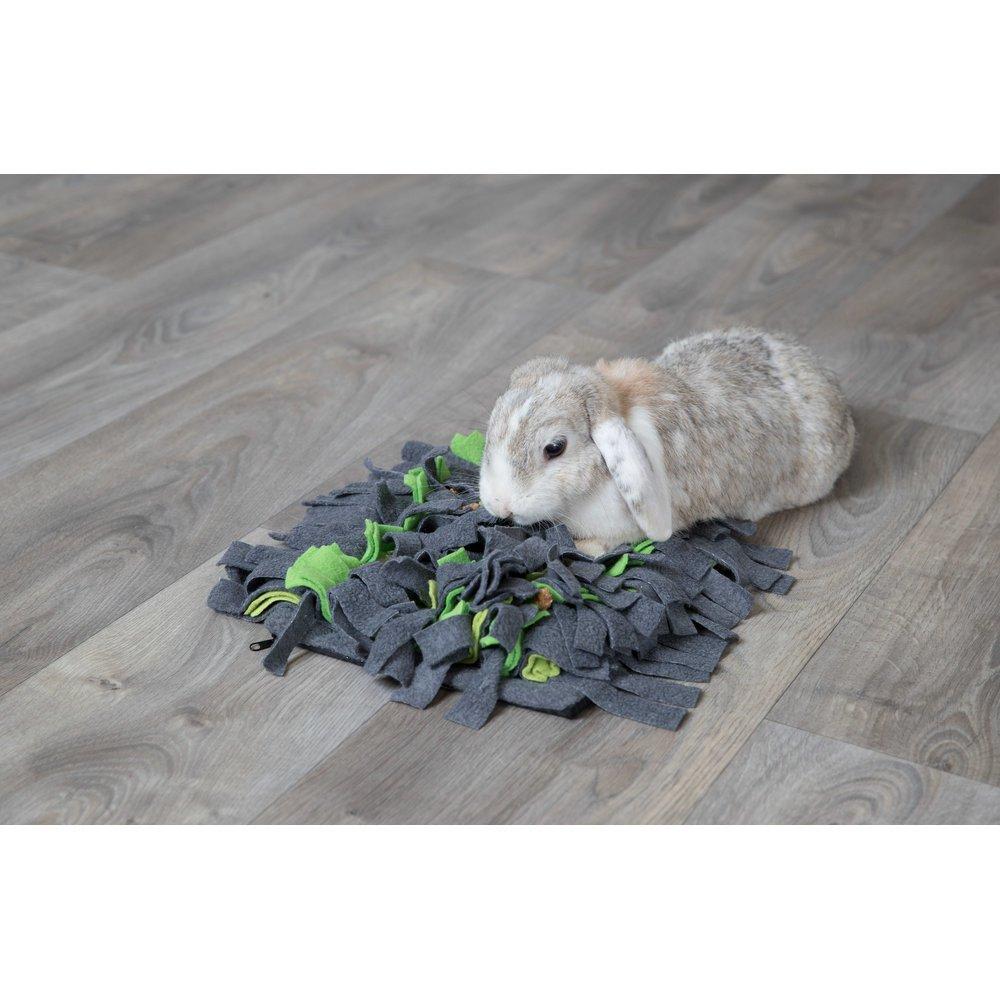 TRIXIE Schnüffelteppich für Kleintiere 62818, Bild 2