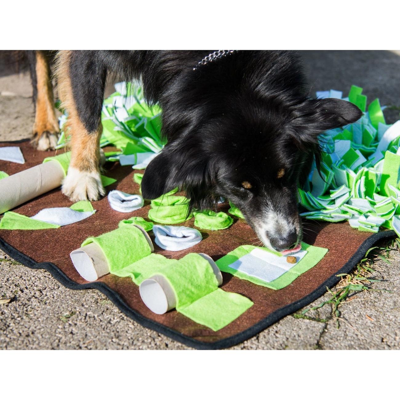 tiierisch.de Basics Schnüffelteppich Hund, Bild 8