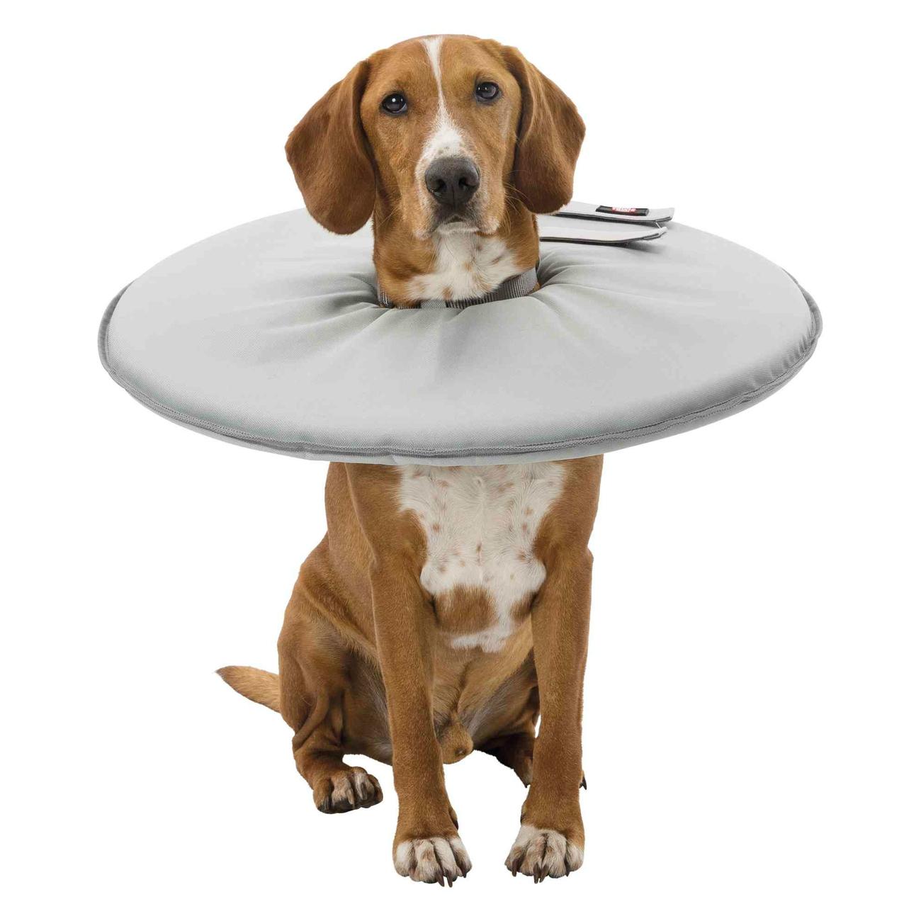 Trixie Schutzkragen für Hunde Leckschutz 19421