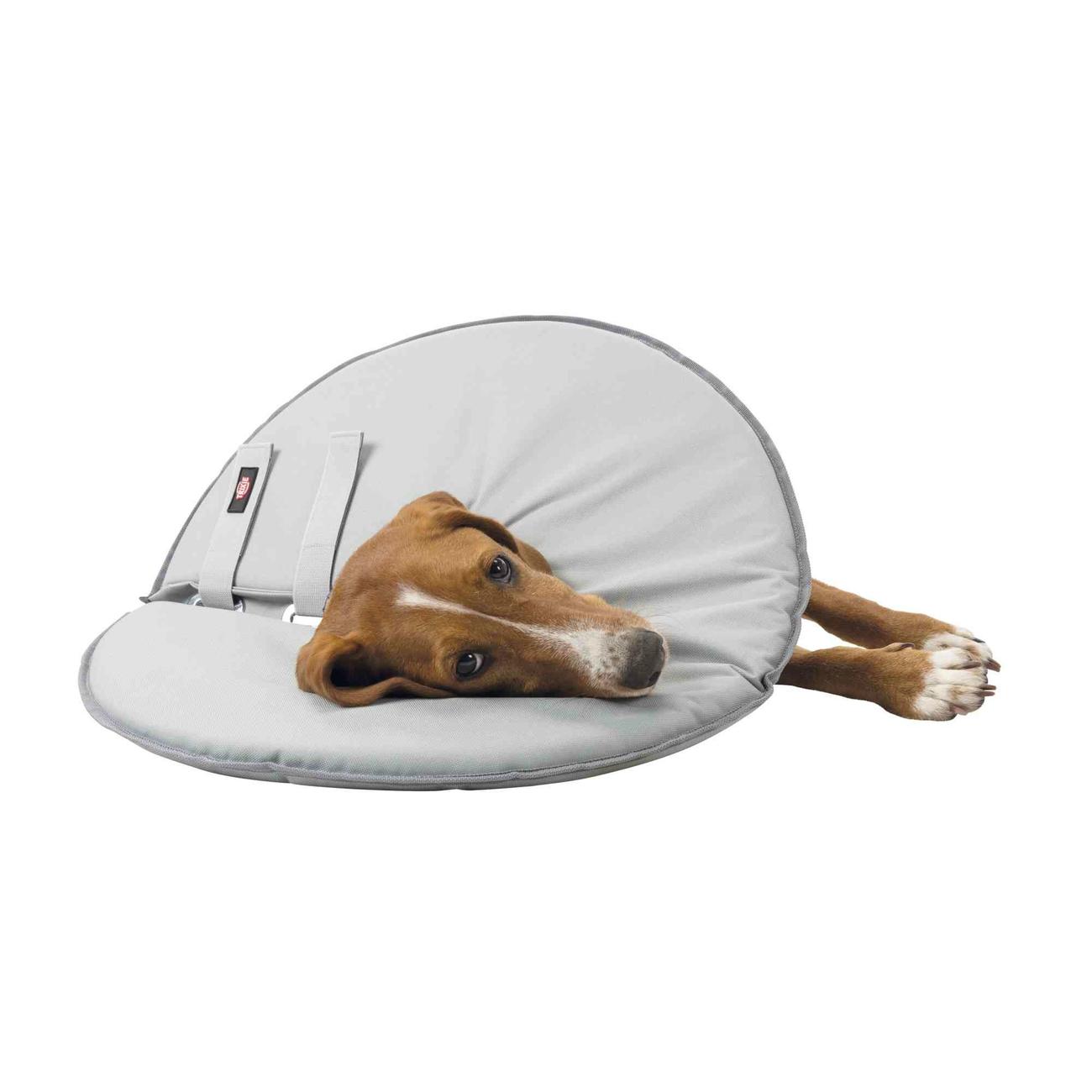 Trixie Schutzkragen für Hunde Leckschutz 19421, Bild 5
