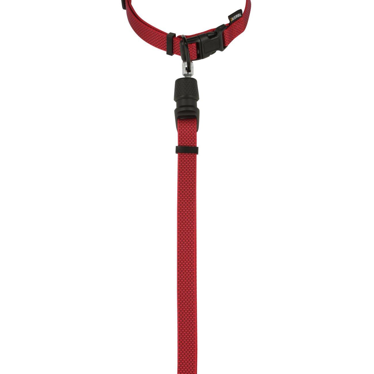 GoLeyGo Set 2.0 Flat Halsband + Leine, Bild 8
