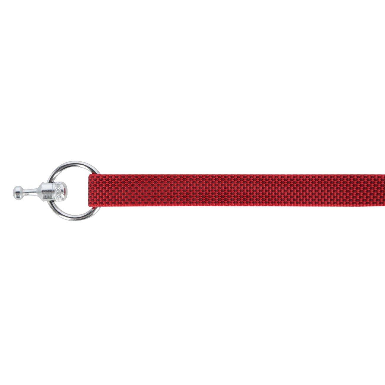 GoLeyGo Set 2.0 Flat Halsband + Leine, Bild 9