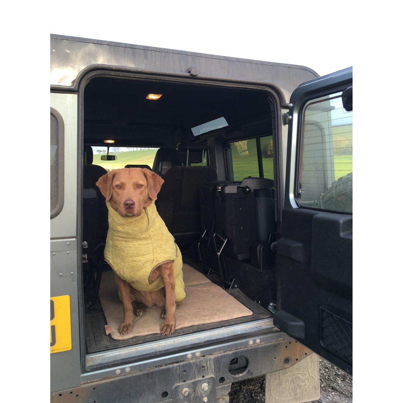SICCARO Hundematte FlexDogMat, Bild 13