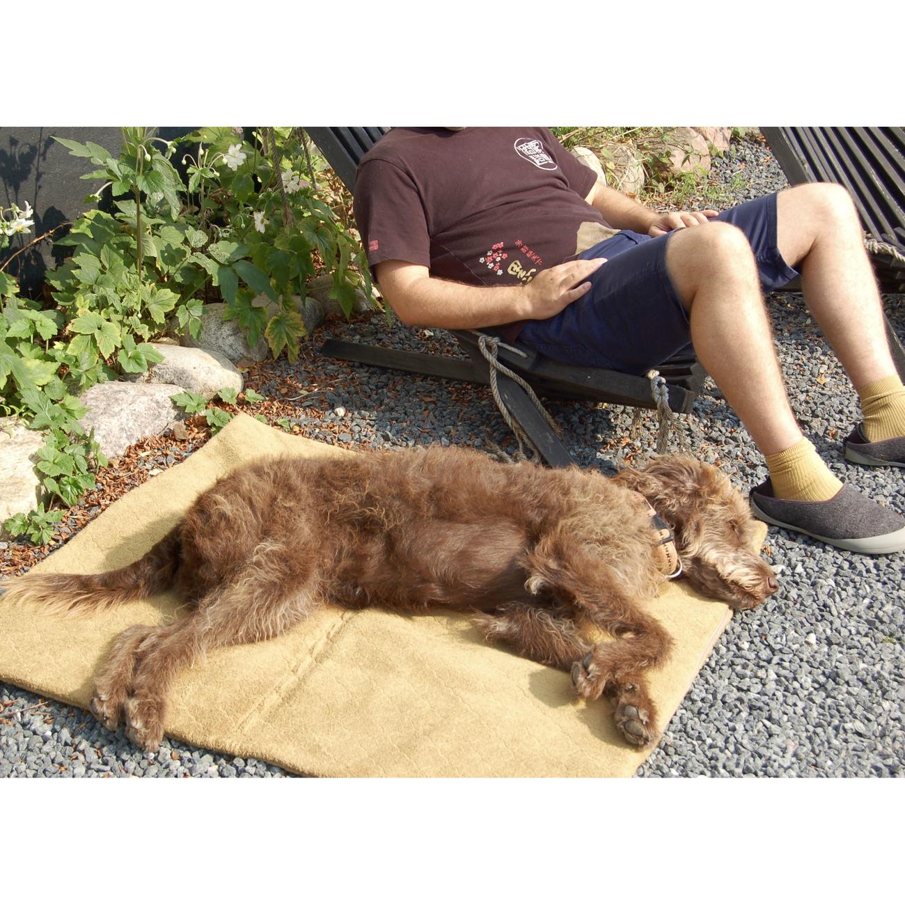 SICCARO Hundematte FlexDogMat, Bild 18