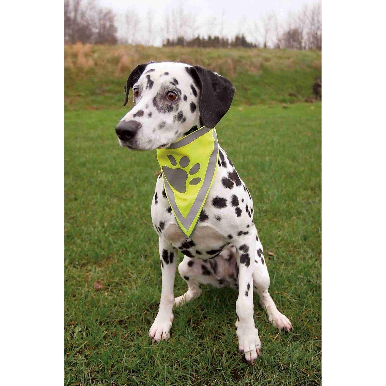 TRIXIE Sicherheits-Halstuch für Hunde 30121, Bild 2