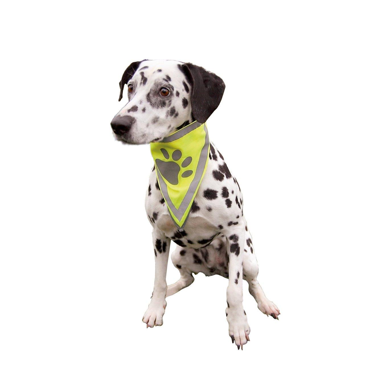 TRIXIE Sicherheits-Halstuch für Hunde 30121, Bild 4