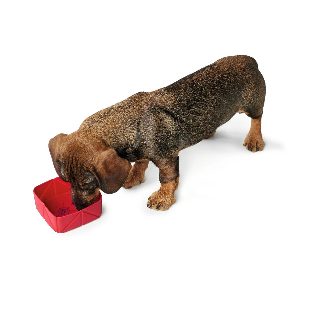 Hunter Silikon Falt-Reisenapf für Hunde List 65131, Bild 5