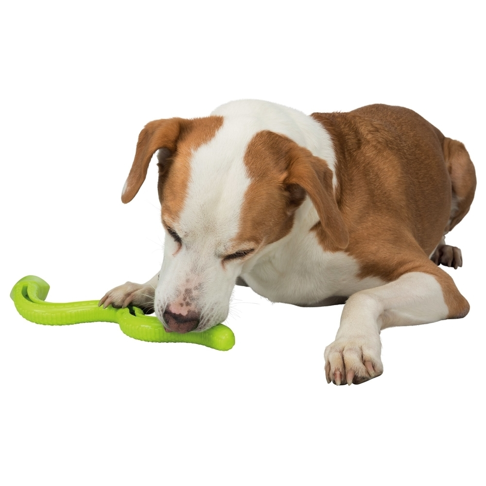 TRIXIE Snack-Snake Snackspielzeug für Hunde 34949, Bild 2