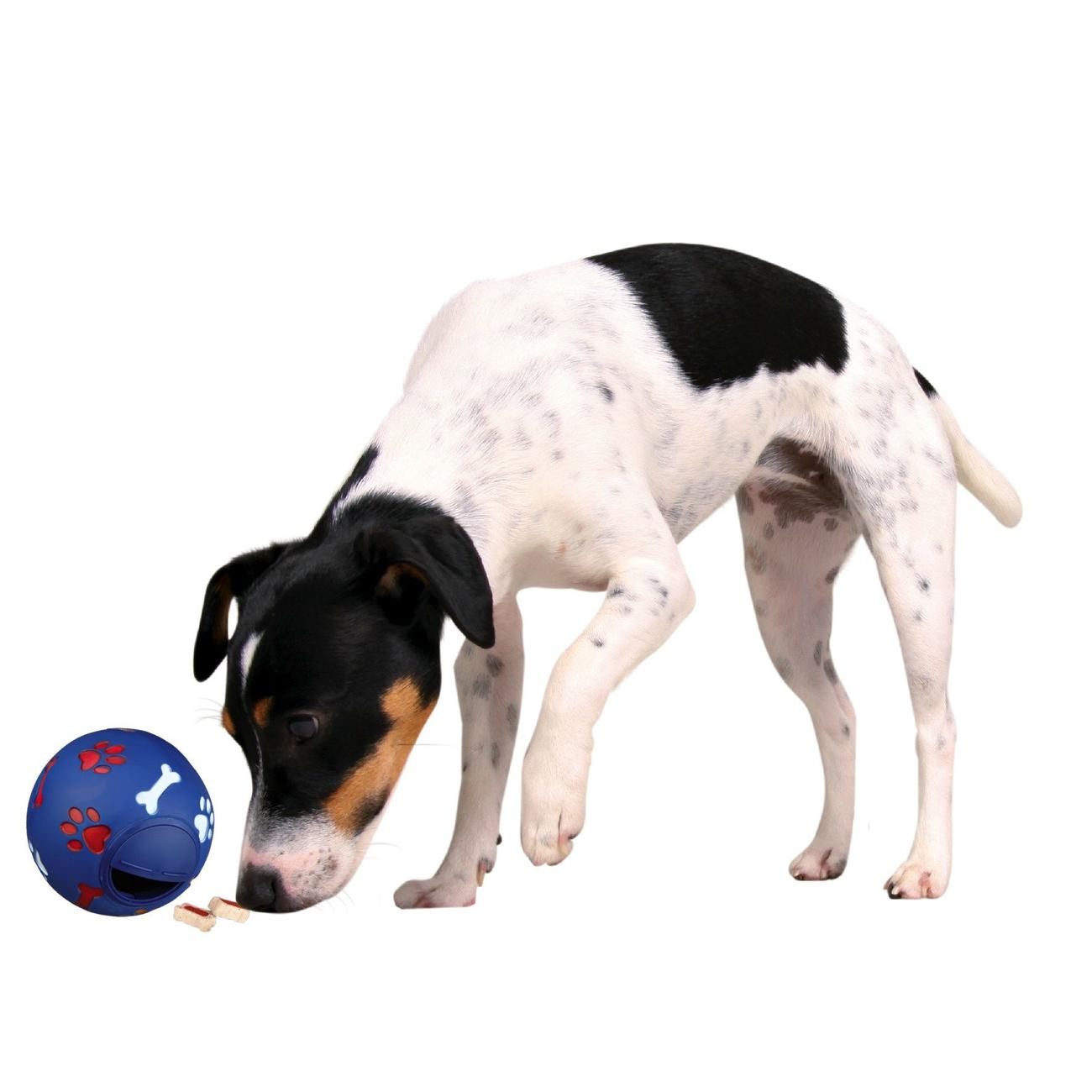 Trixie Snacky Snackball für Hunde 3490, Bild 3