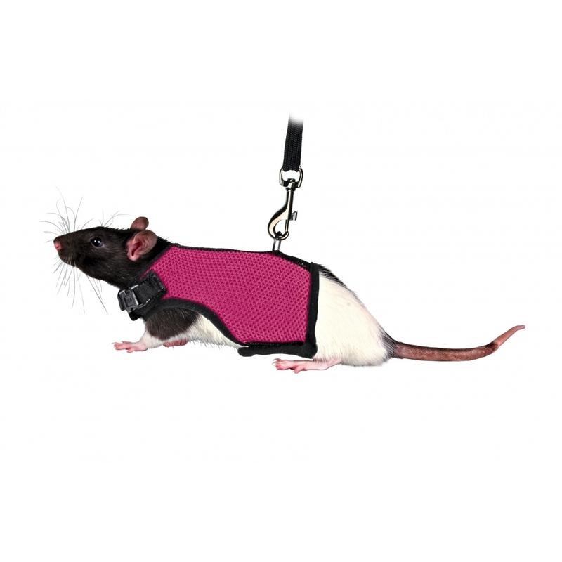 Trixie Softgeschirr für Meerschweinchenbabys und Ratten, div. Farben