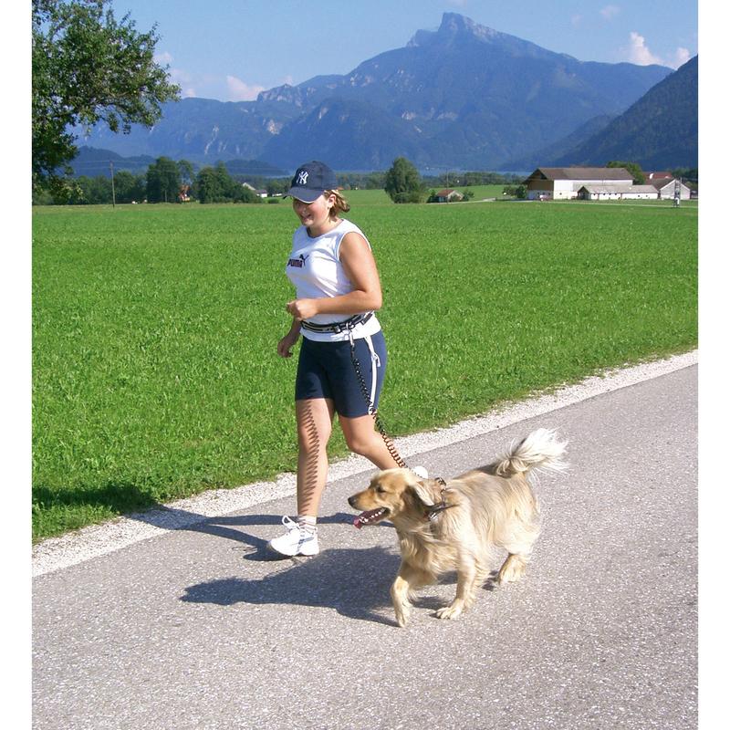 Kerbl Spiralleine Hund Jogging