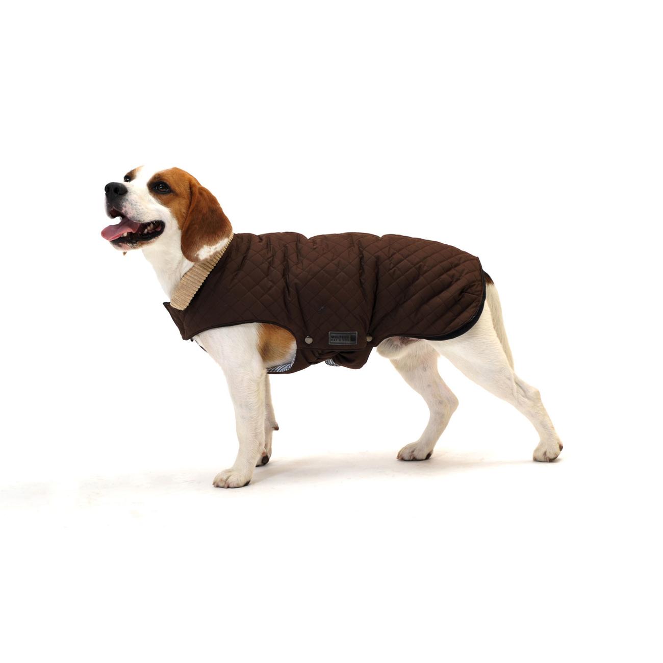 Wolters Steppjacke für Hunde Windsor mit Cordkragen, Bild 5