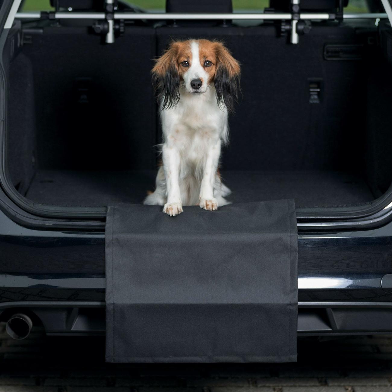 Trixie Stoßstangenschutz Stoßstangenschürze für das Auto, 50 × 60 cm, schwarz