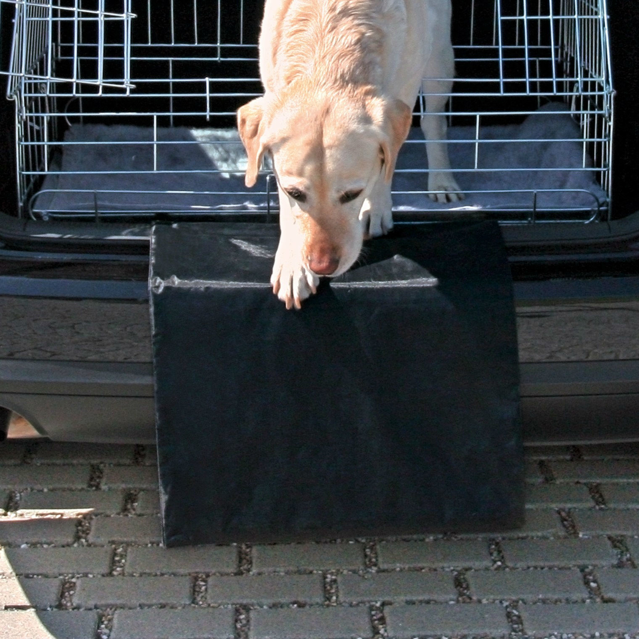 Trixie Stoßstangenschutz Stoßstangenschürze für das Auto 1346, Bild 2