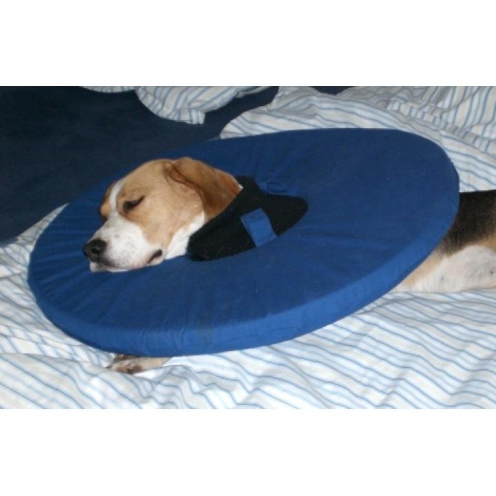 TEPAW Schutzkragen Leckschutz für Hunde, Bild 4