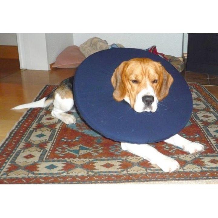 TEPAW Schutzkragen Leckschutz für Hunde, Bild 5