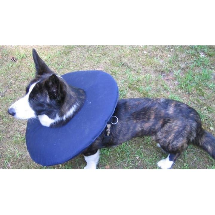 TEPAW Schutzkragen Leckschutz für Hunde, Bild 9