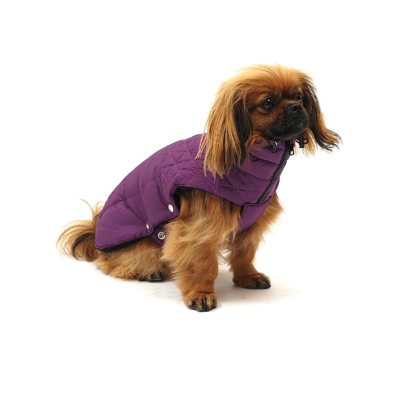 Wolters Thermo Steppjacke Boston für Hunde, Bild 5