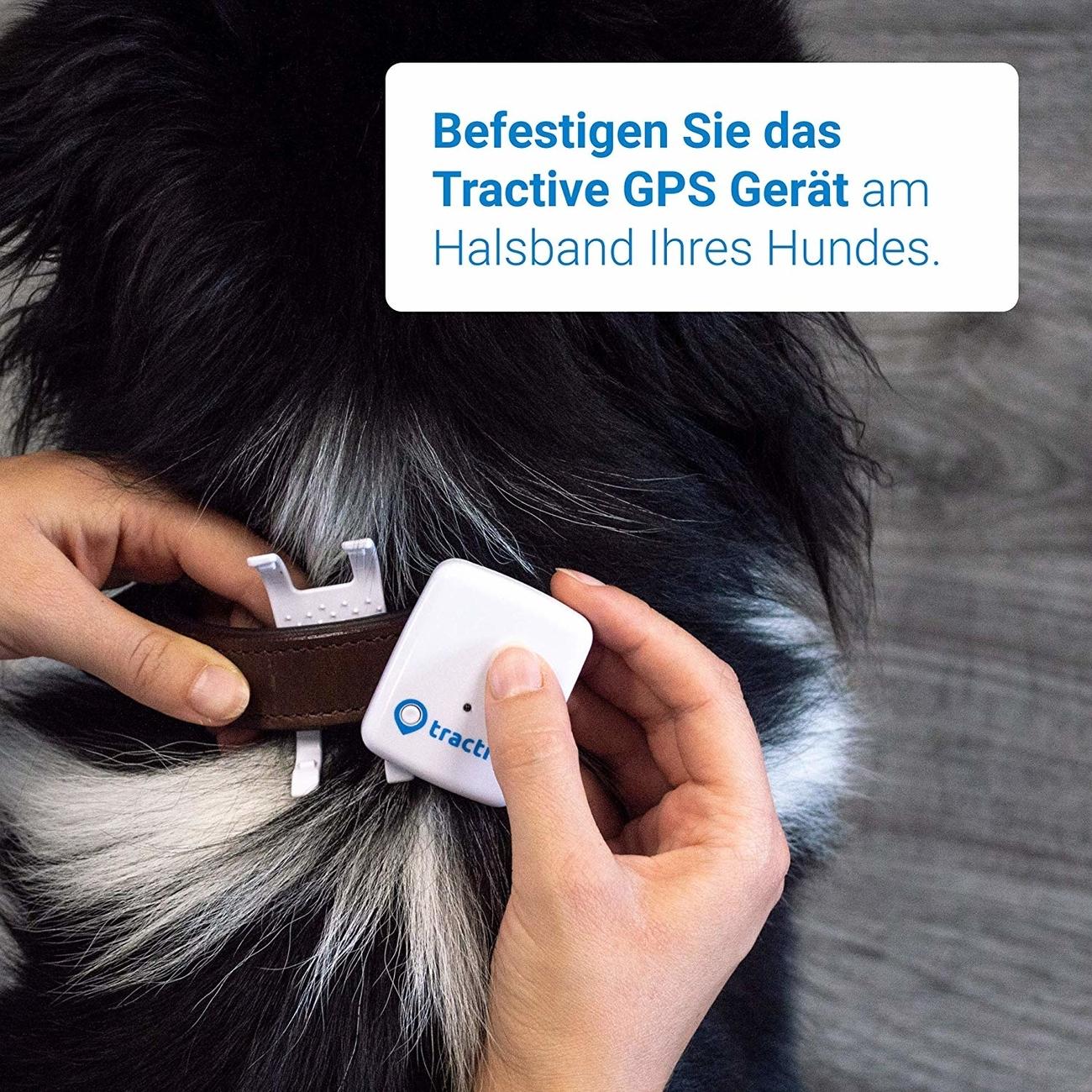 Tractive GPS Tracker für Haustiere, Bild 8