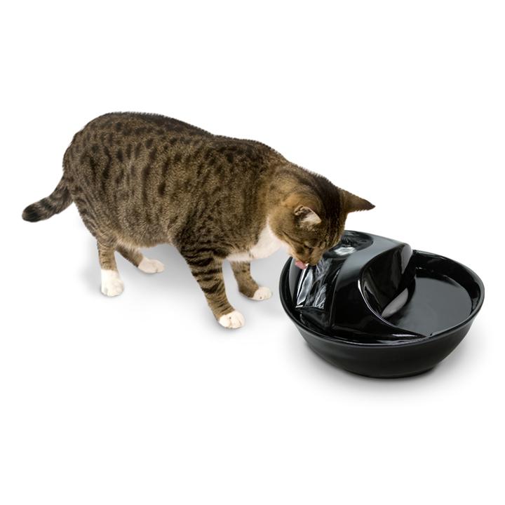 Pioneer Pet Trinkbrunnen für Katzen und Hunde Rain Drop, Bild 6