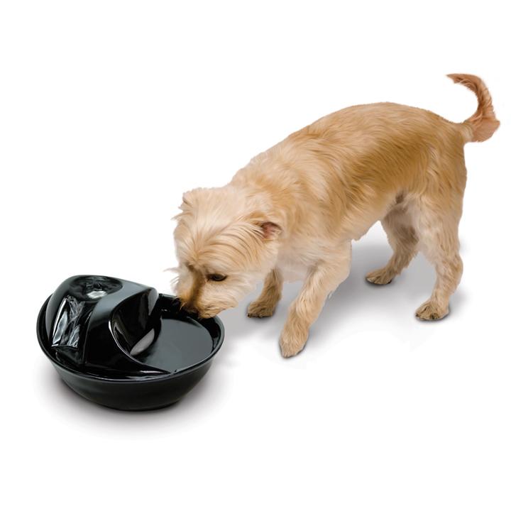 Pioneer Pet Trinkbrunnen für Katzen und Hunde Rain Drop, Bild 7