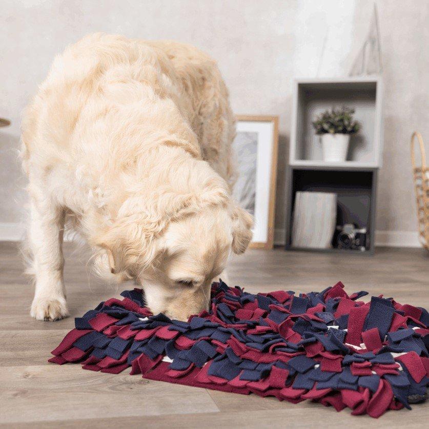 TRIXIE Activity Schnüffelteppich für Hunde und Katzen 32037, Bild 2