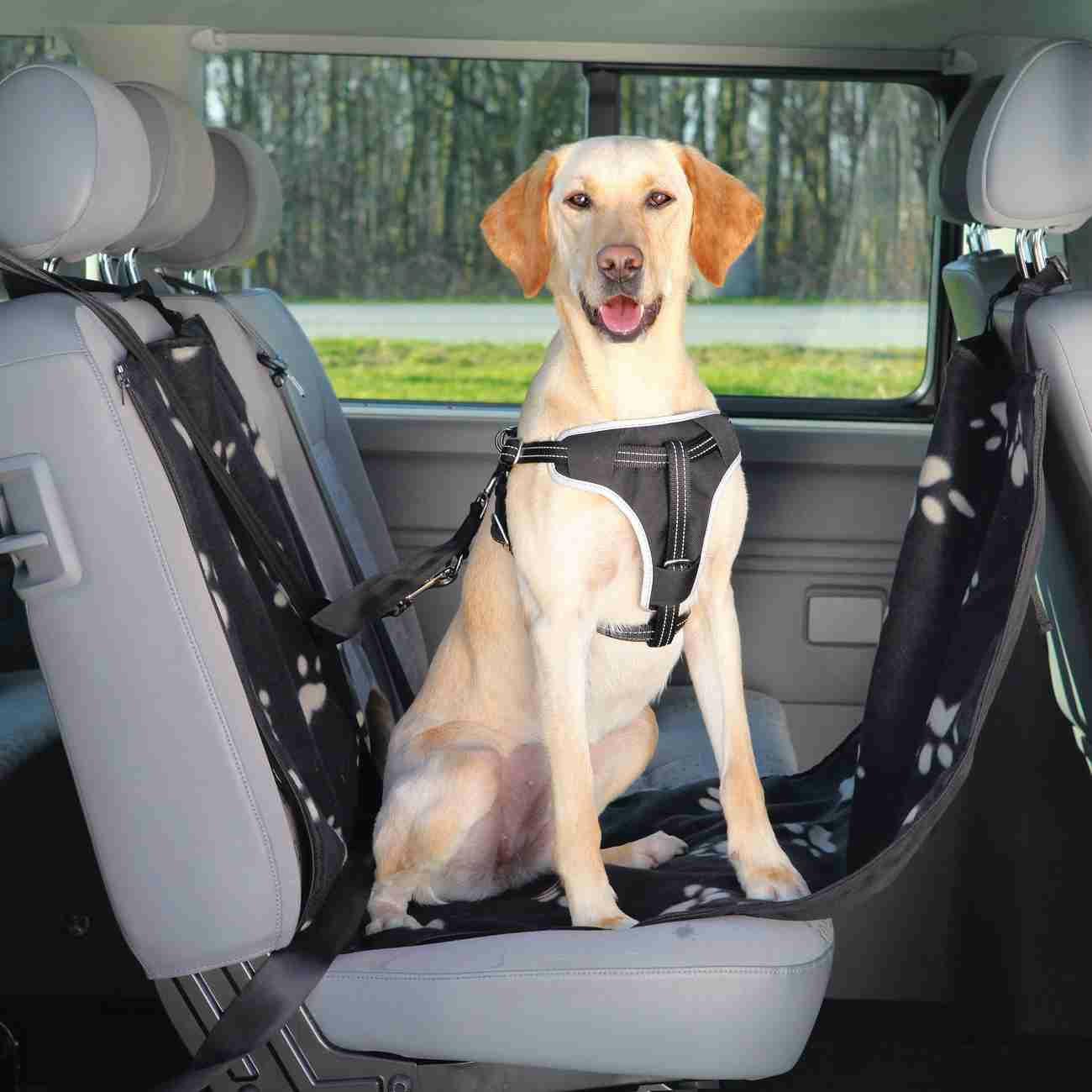 Trixie Auto-Schondecke für die Rückbank 1-Sitz 13231
